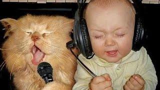 「猫と赤ちゃん」最高におもしろ猫と赤ちゃんのハプニング集・思わずに笑っちゃう
