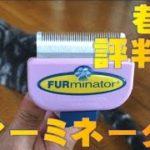 猫用抜け毛ブラシ売れ筋No1! ファーミネーターの実力とは! Brush for cats FURminator