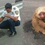 パトロール中の警察官がカワイイ珍客に遭遇。