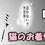 【感動 猫】猫とお別れしたあなたへ…「猫のお着替え」泣けるアニメ chinta ch