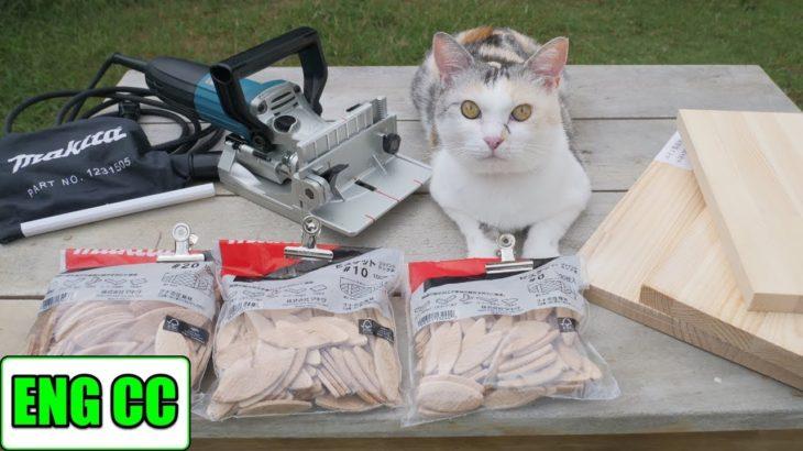 DIYで猫部屋の壁に手作りキャットウォーク part2  新アイテムマキタジョイントカッター【Eng CC】