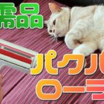 【猫飼い必需品】ぱくぱくローラーを使って抜け毛の掃除を…