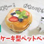 ニトリのパンケーキ型の猫用ベッド買ったら可愛すぎた…!