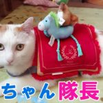 上手に出来るかニャ?猫が一瞬でカワイイ音楽隊長♪になれるアイテムのご紹介☆猫用ペコボックス6月号