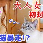 巻き髪女子と初対面したオス猫が取った意外な行動とは…