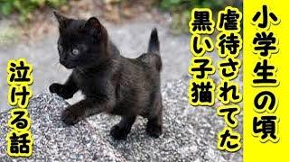 【猫 泣ける話】小学校の頃拾ってきた黒猫(虐待された)の話でもしようか(猫 感動 泣ける話 保護 涙腺崩壊 感涙 動物 動画 里親)招き猫ちゃんねる